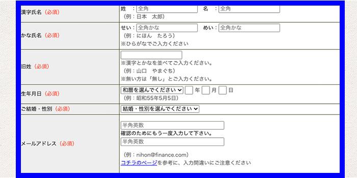 「漢字氏名」「生年月日」などを入力する