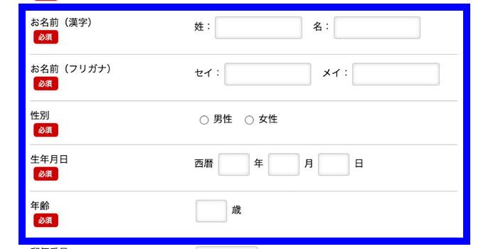 「お名前(漢字)」や「生年月日」を入力する
